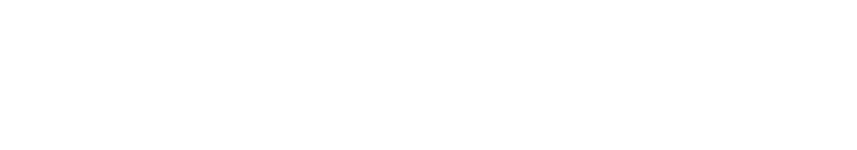 andserve Logo white